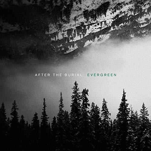 After the Burial - Evergreen [ Vinyl ][ Black/Green ] [ Für PRIME-Mitglieder ]