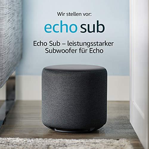 Echo SUB generalüberholt