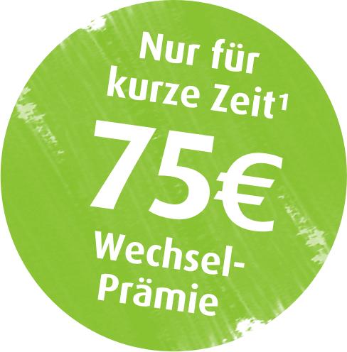 Nur noch bis morgen: Ökostrom & Ökogas mit je 75 € Prämie