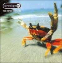 The Prodigy - The Fat of The Land / Music For The Jilted Generation - Doppel Vinyl LP für je 14,93€ inkl. Versand