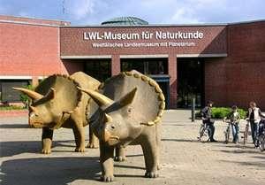 Freier Eintritt an Heiligabend - Naturkundemuseum Münster