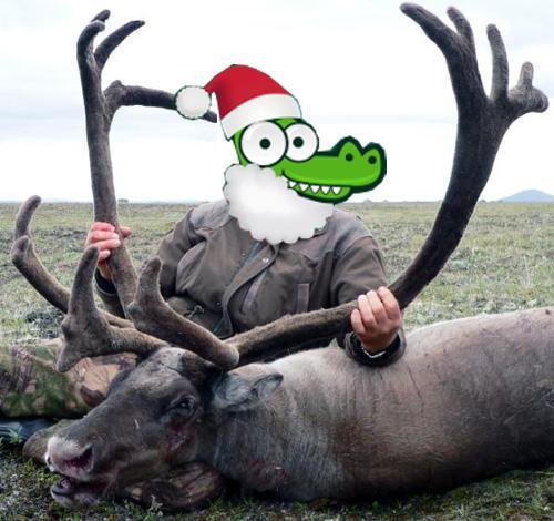 Rentier-Urlaub über Silvester in Lappland (Finnland)