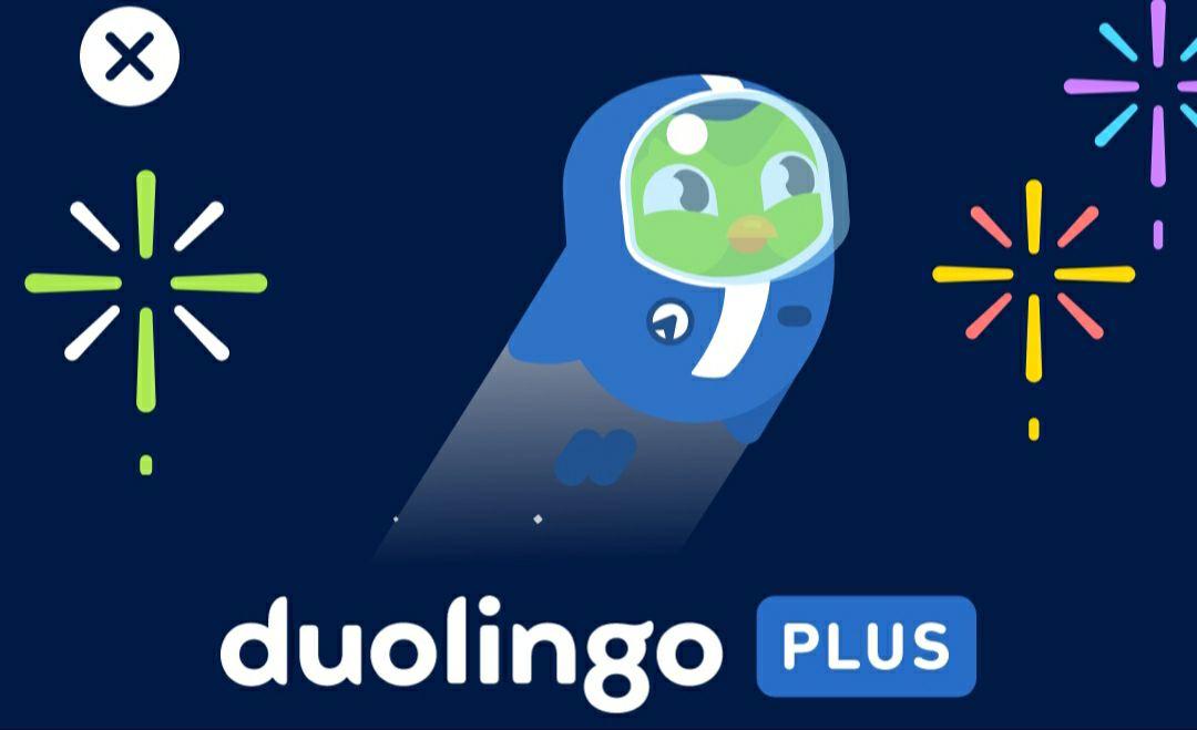 60 % auf 12 Monate Duolingo Plus