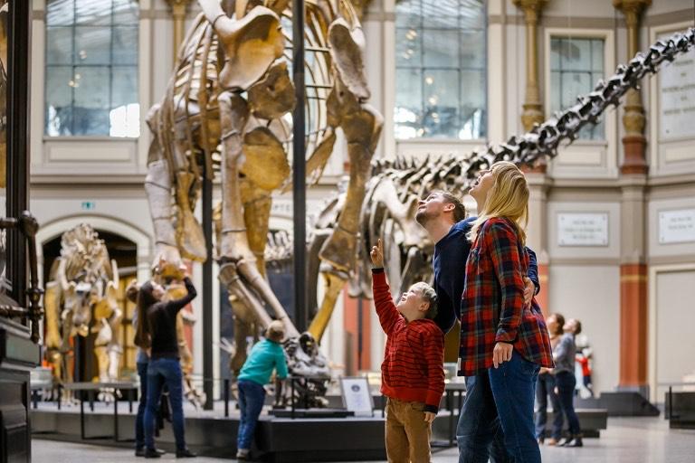 Naturkundemuseum Berlin: Zwölf Wochenendtage im Jahr ab 2020 kostenfrei