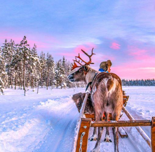 Flüge: Lappland / Finnland [Jan. - März] Hin und Zurück von Amsterdam nach Kittila, Kuusamo und Rovaniemi ab nur 104€ (großes Handgepäck)
