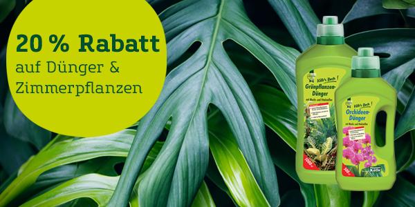 [Pflanzen Kölle] 20% Online-Rabatt zum Tag der Zimmerpflanze am 10.1.20 (bis 12.1.20) auf alle Zimmerpflanzen & Dünger