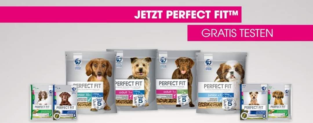 Kostenlos testen 100% Cashback auf Perfect Fit Hundefutter GzG