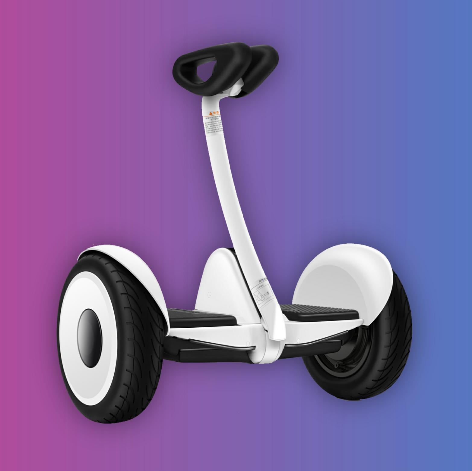 [FR Grenzgänger] Ninebot Mini - Selbstbalancierender Scooter | Nicht StVZO Konform