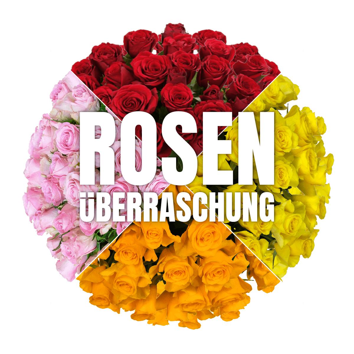 40 Rosen inkl. Versand und Grußkarte - 50cm, rot, pink, gelb oder orange