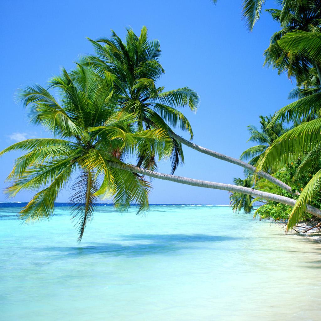 Flüge nach Hawaii (Honolulu) inkl. Gepäck hin und zurück von München, Berlin, Frankfurt, Hamburg, Düsseldorf uvm. (Jan - Nov / exkl. Ferien)