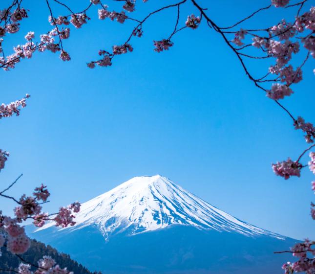 Flüge: Tokio / Japan ( April-Jun/Sept-Dez ) Hin- und Rückflug mit Qatar Airways von Brüssel ab 327€ p.P.