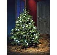 Hornbach Online ,Weihnachtsartikel sehr stark reduziert.4,95€ Versandkosten