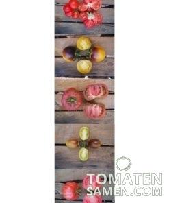 Bis zu 8% Ersparnis durch Tomatensamen Mischungen - Beispiel Schönheiten