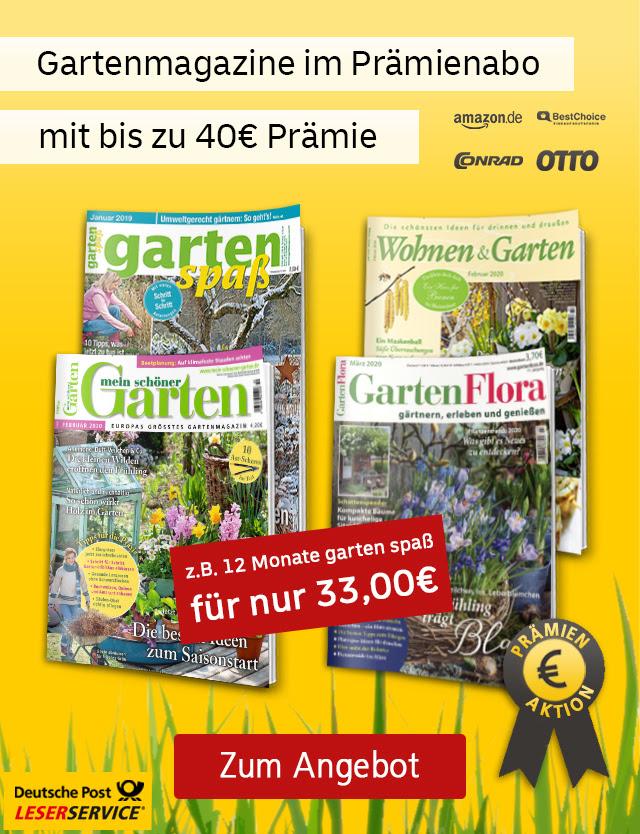 [Leserservice] GartenFlora (12 Ausgaben) für 43,60 + 40 € BestChoice / Mein schöner Garten Abo (12 Ausgaben) für 46 € + 35 € BC / GartenSpaß