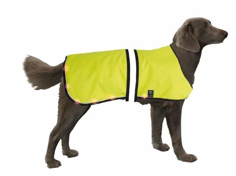 Nobby Sicherheitsweste für Hunde mit blinkenden LEDs (Größe L: Hals 55-75cm, Brust 70-95cm)