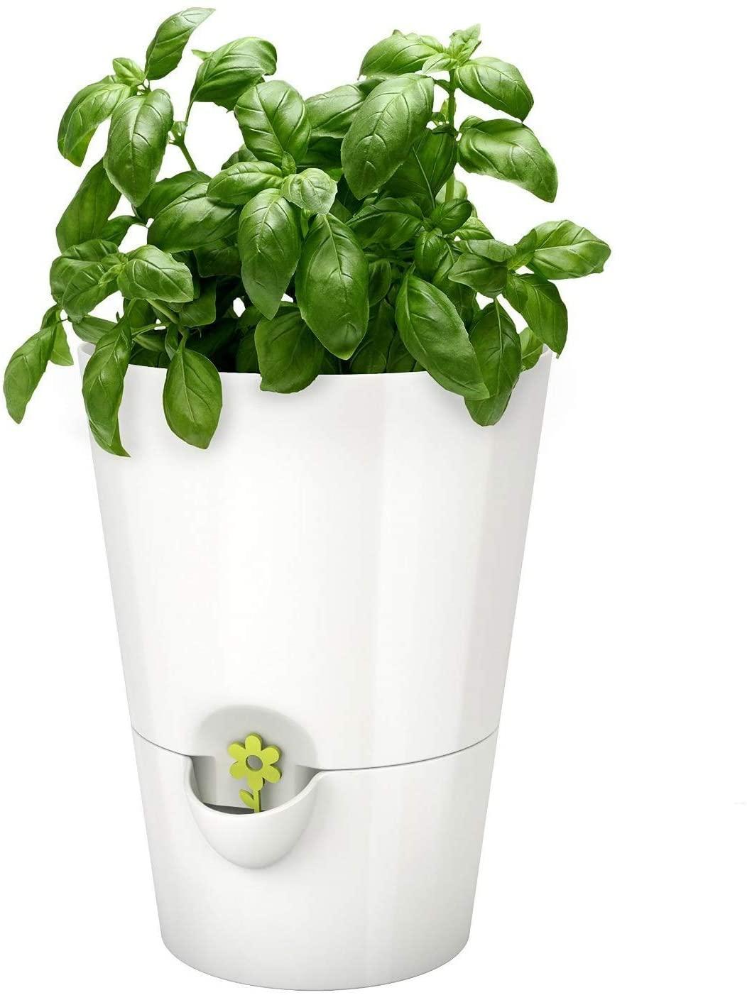 Emsa Fresh Herbs Selbstbewässernder Kräutertopf z.B. weiß [Amazon Prime]