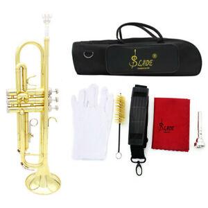 Trompete Bb B Flaches Messing Exquisit mit Mundstückhandschuhen H3P6
