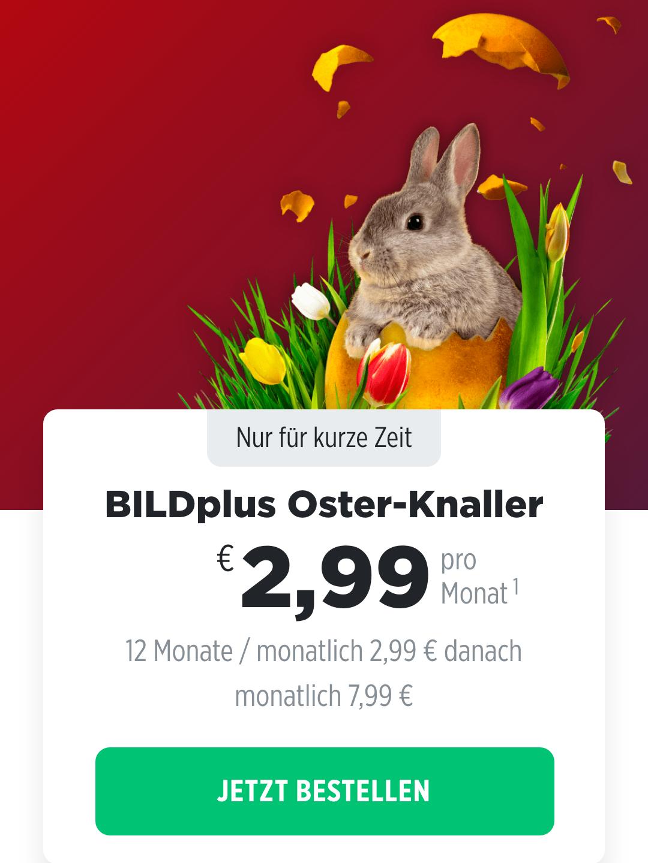 Bild Plus Abo 2.99 Euro mtl anstatt 7.99 Euro 12 Monate Laufzeit