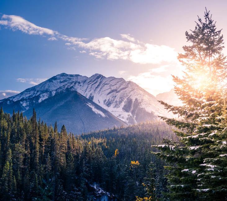 Reisedokumentation: 17.000 Kilometer Kanada - Kostenlos im Stream