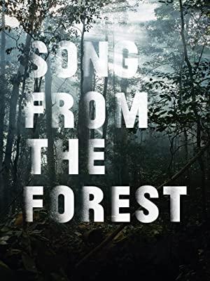 """[ARD MEDIATHEK] Song from the Forest - Oscar nominierte Doku """"kostenlos"""" im Stream"""