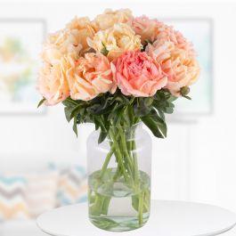 10 Pfingstrosen in der Farbe 'Coral Sunset' mit XXL Blüten (ca. 15cm)
