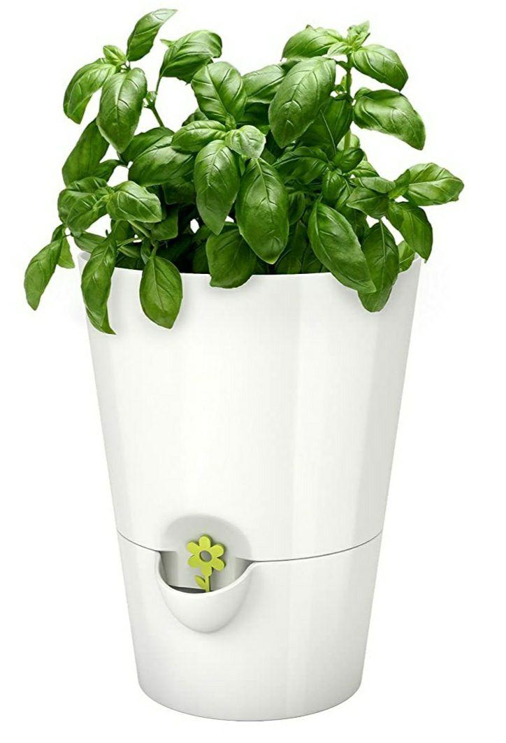 Emsa Selbstbewässerungstopf(Prime) Farbe: Weiß