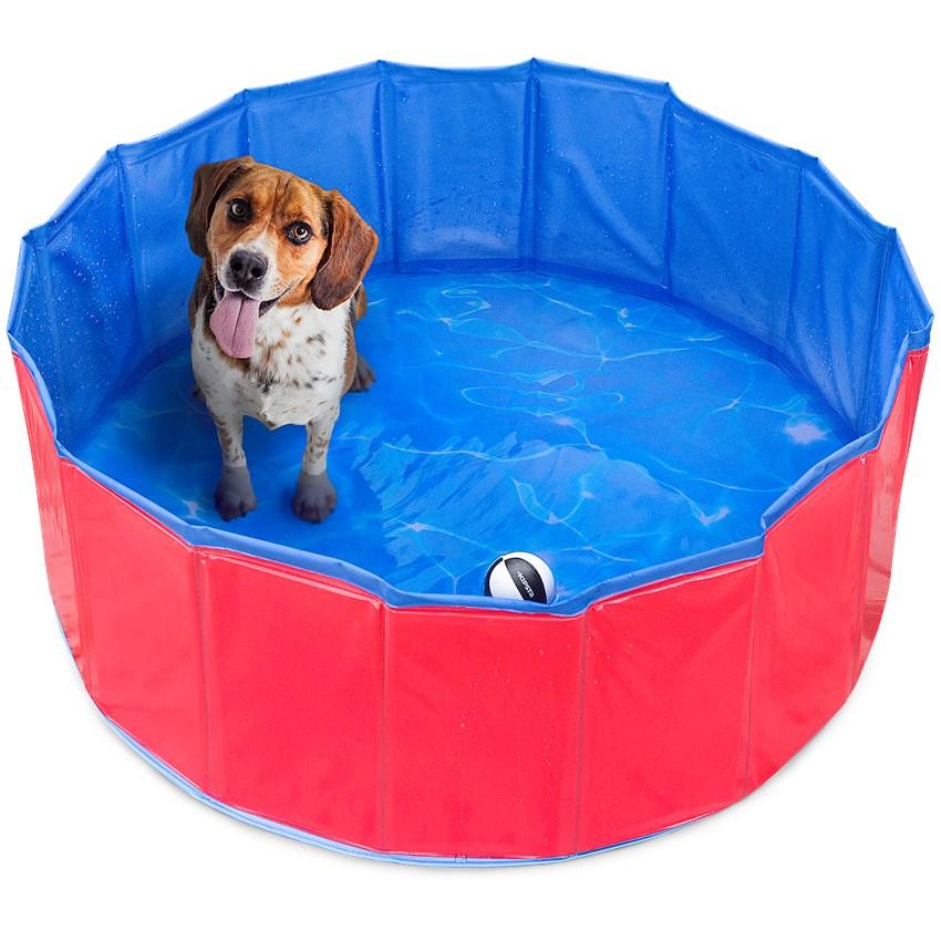 Hundepool (80x30cm) für 9,95€ bei Action