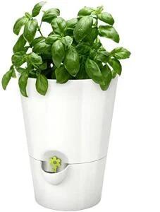 Emsa Kräutertopf für frische Kräuter, Selbstbewässerung (Weiß) für 7,79€ (Amazon Prime)