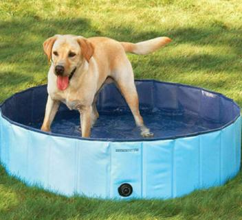 Profi Faltbar Hundepool Doggy Pool Swimmingpool - 80x20cm