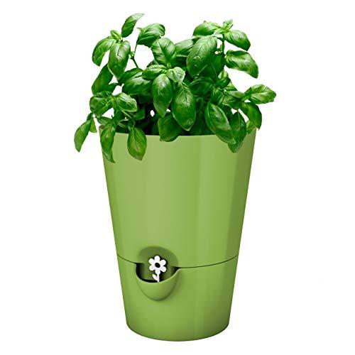 Emsa Kräutertopf für frische Kräuter, Selbstbewässerung (Hellgrün) für 7,79€ (Amazon Prime)