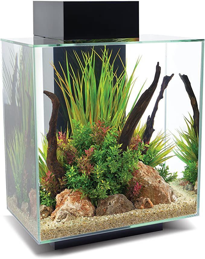 Fluval Edge 2.0 46l Led Aquarium Set @amazon
