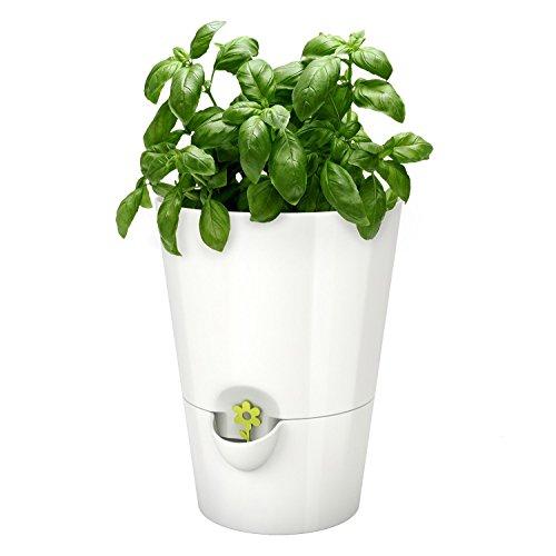 Emsa 514244 Kräutertopf für frische Kräuter, Selbstbewässerung, Farbe weiß