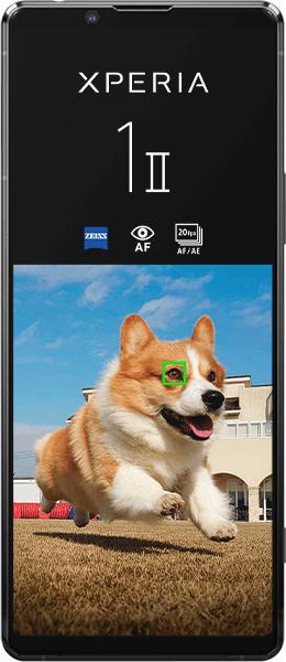 Sony Xperia 1 II - Black - 256 GB. 36,99 € mtl. FLATInternet 3 GBLTE bis zu50 MBit/s FLATTelefonie FLATSMS FLATEU-Ausland