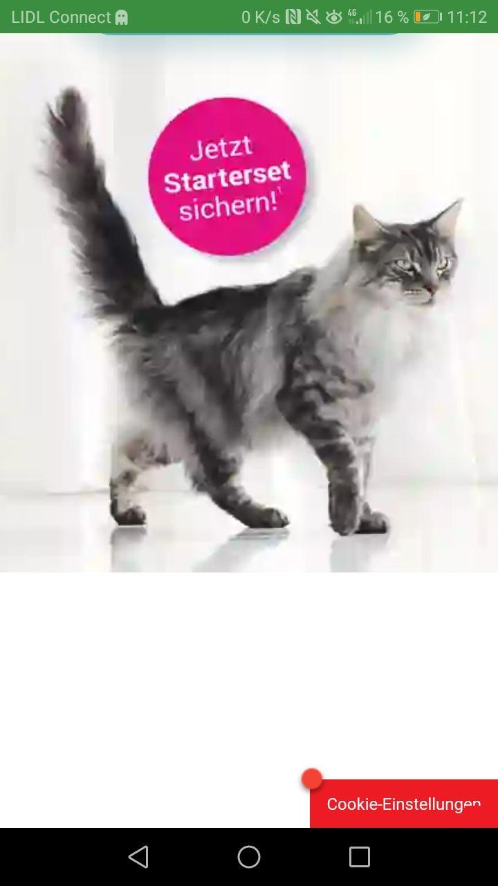 800g Purina Katzenfutter gratis
