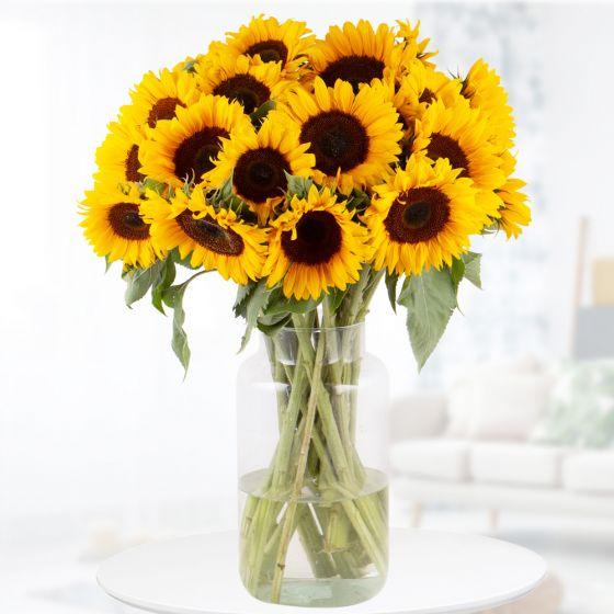 Blumenstrauß mit 20 Sonnenblumen inkl. kostenloser Grußkarte