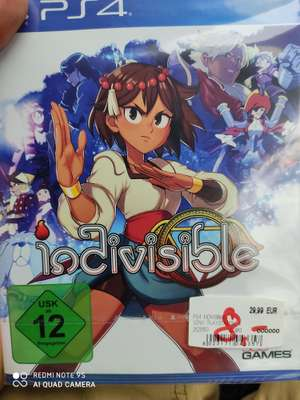 Lokal Media Markt Nordhorn - Indivisible PS4