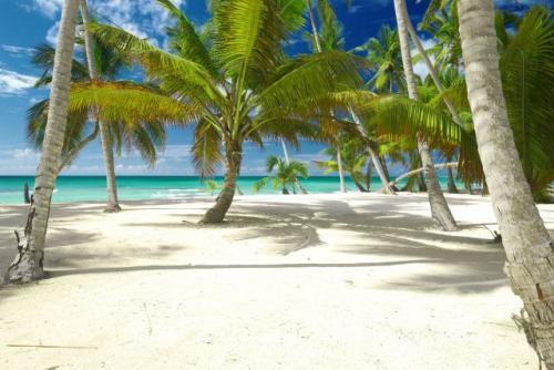 Last Minute Flug&Hotel: 10 Tage Dominikanische Republik von Frankfurt schon für 509€ p.P bei 2 Reisenden