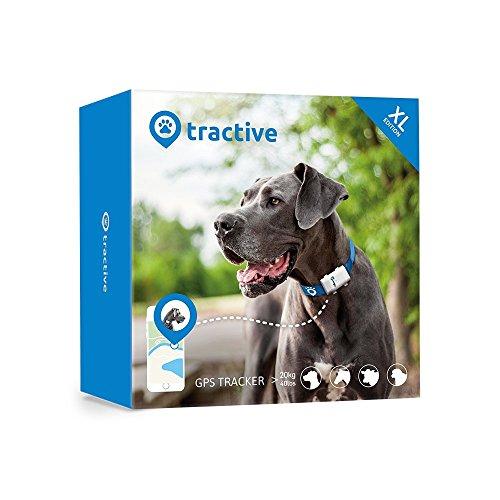 Hunde GPS Tracker mit 6 Wochen Laufzeit und Echtzeitübertragung