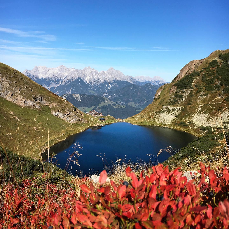 Tirol, Österreich: neues 4* TUI BLUE Fieberbrunn - Doppelzimmer inkl. Halbpension & Spa / August - Oktober