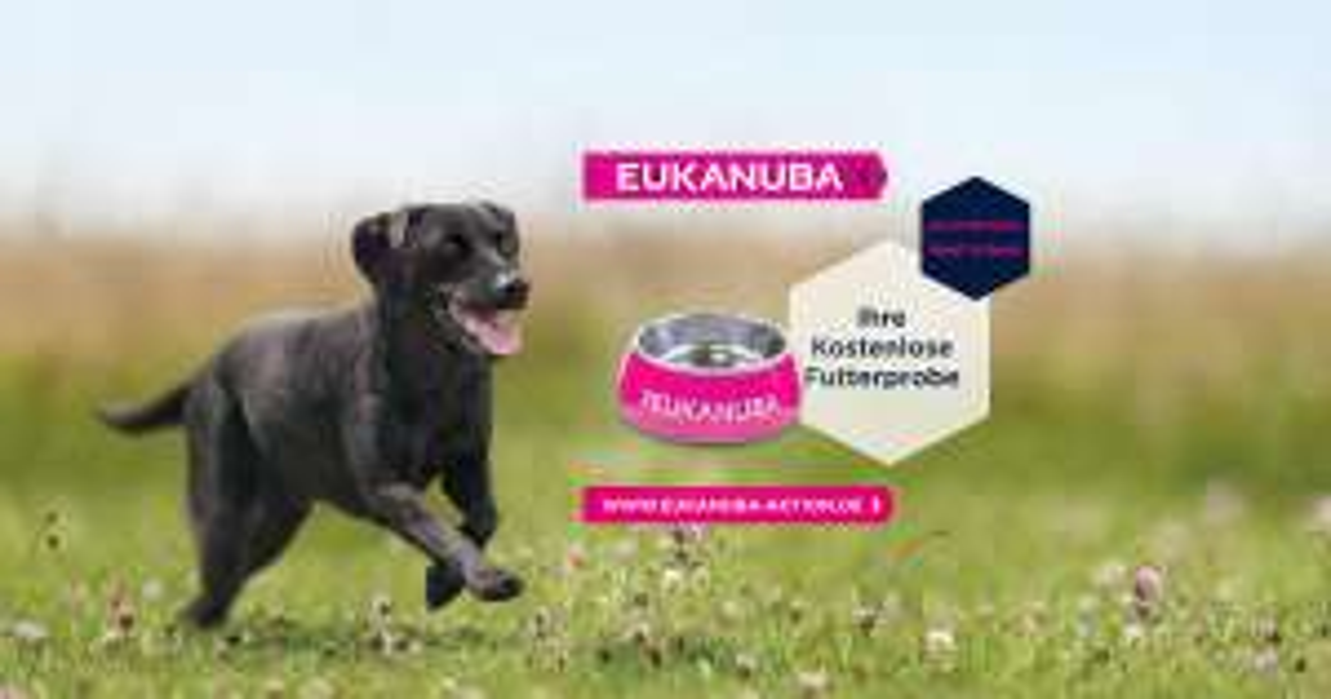Kostenloses EUKANUBA Futter + Gratis Napf mit Namen drauf bei Kauf