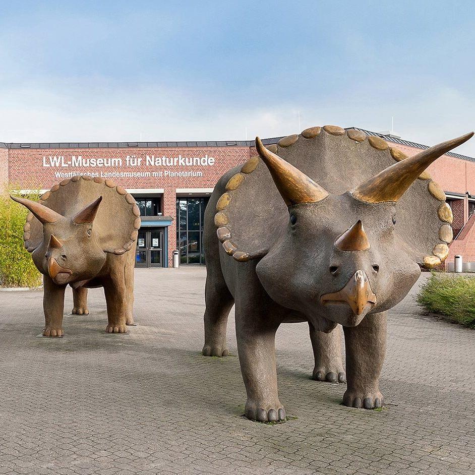 [lokal Münster] Freier Eintritt im LWL-Museum für Naturkunde am Samstag (5.9.)
