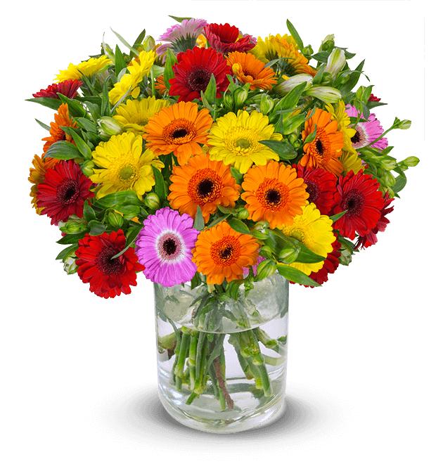 Bunter Blumenstrauß aus Gerbera und Inkalilien 'You Are The One' mit über 150 Blüten, inkl. Versand