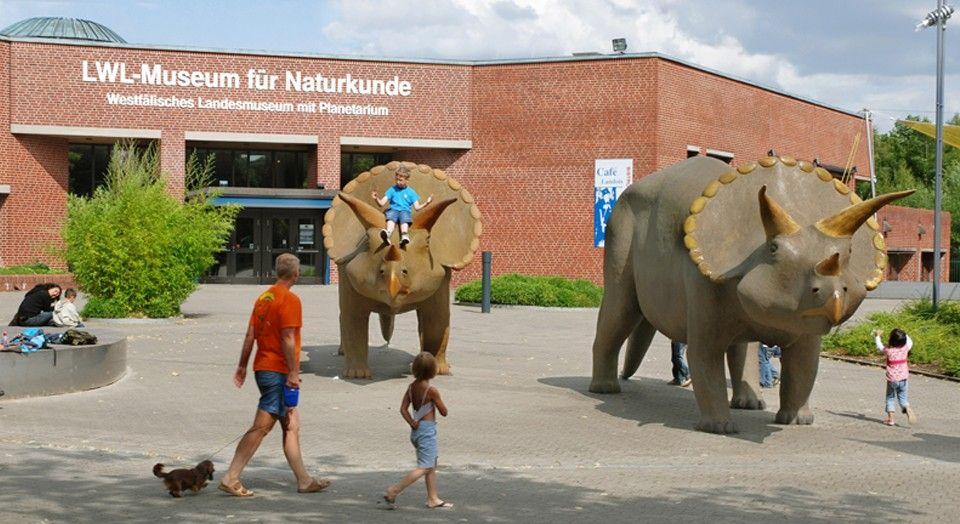 Lokal Münster - Freier Eintritt LWL Naturkundemuseum Münster am So. 04.10. von 14-18 Uhr