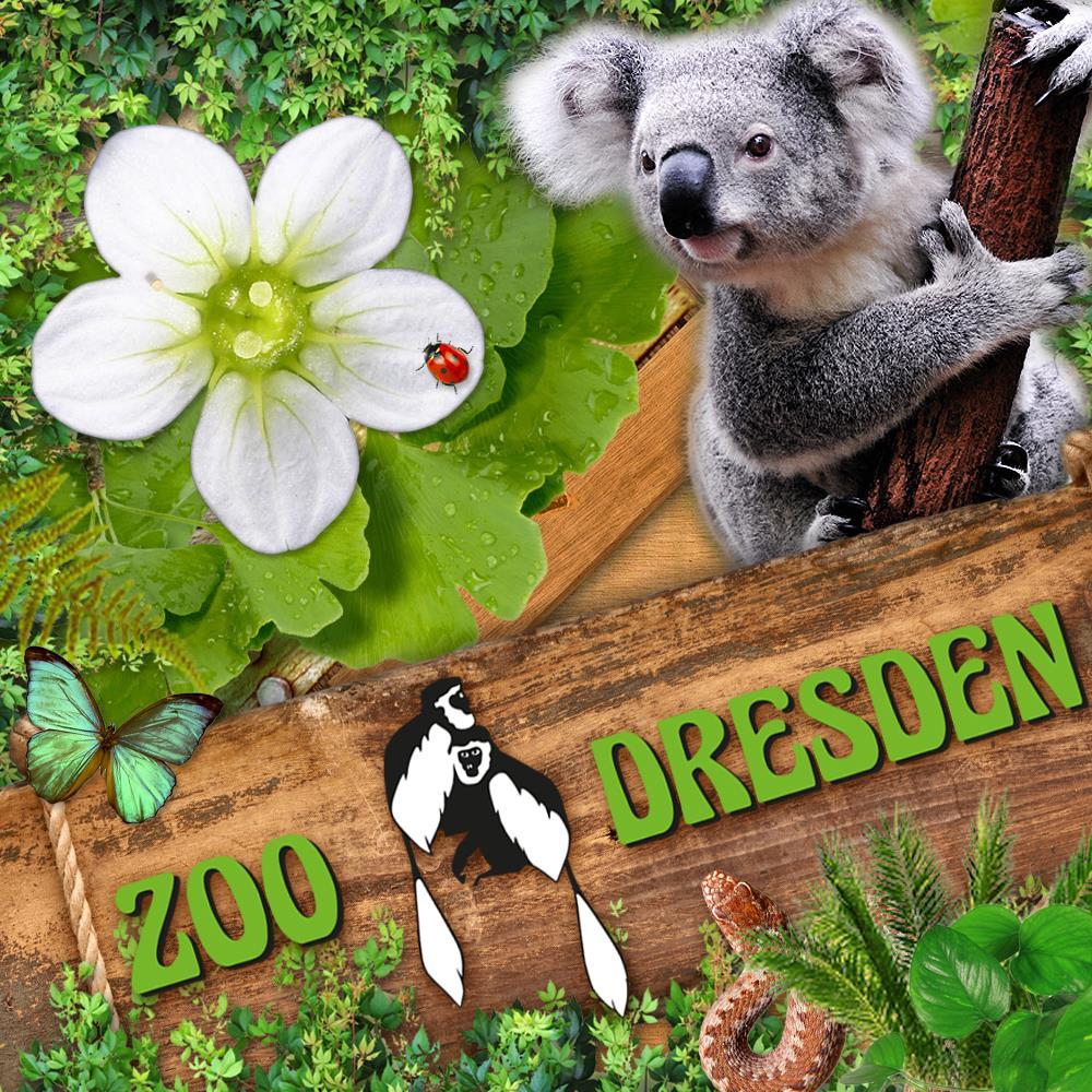 Zoo Dresden - Gratis Eintritt am 09.10.20 für Besucher bis 16 Jahre