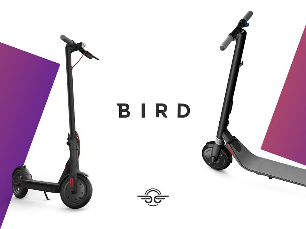 Kostenloses Entsperren + Freifahrt BIRD-Scooter