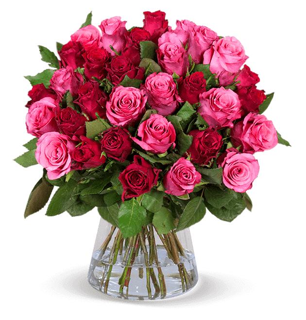 """Rosenblumenstrauß: 38 Rosen """"Romantic-Roses"""" 50cm Länge"""