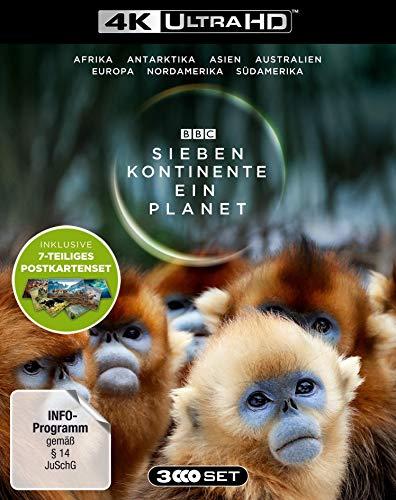 Sieben Kontinente - Ein Planet (4K UHD). Limited Edition mit Postkarten-Set