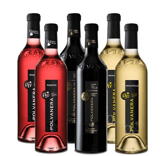 6er Paket: Polvanera italienische Bioweine | 2 x rot (91 falstaff Punkte) , 2 x weiß, 2 x rosé