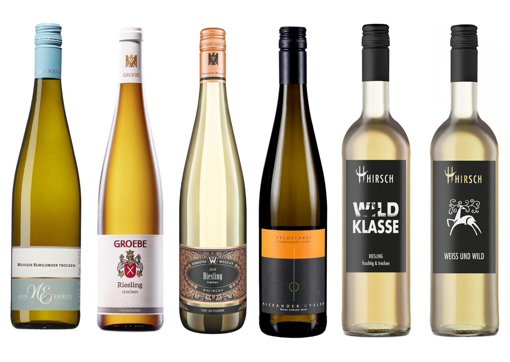 Riesling Probierpaket mit 6 trockenen Weißweinen aus Rheinhessen und Württemberg