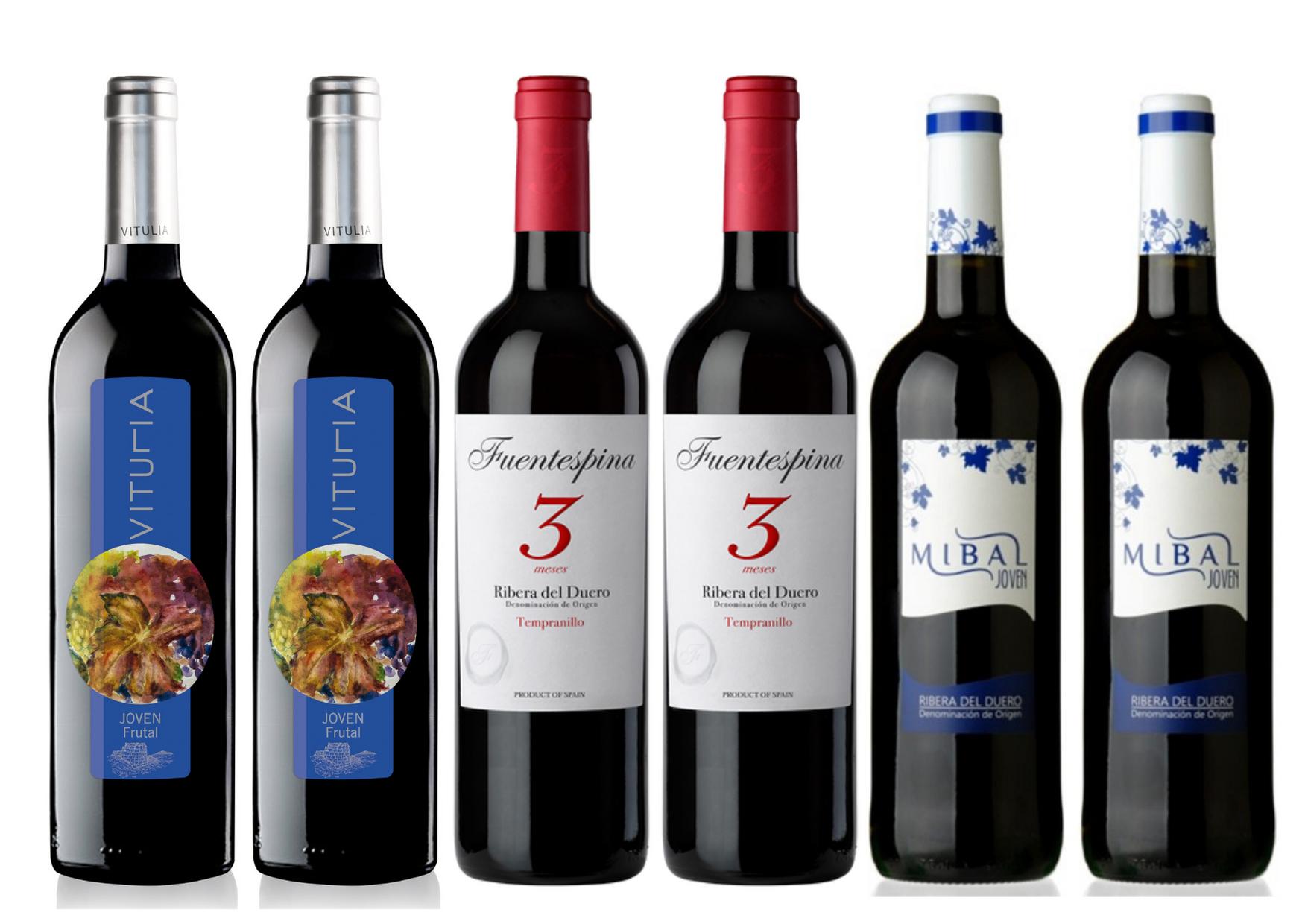 6 spanische Rotweine der Region Ribera Del Duero | Tempranillo